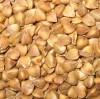 Roasted buckwheat Kernel/Groat