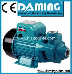 vortex water pumps