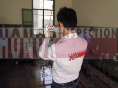 Inspection expediting services