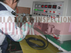 Power Load inspection in china