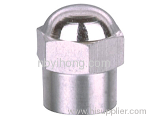 tire valve dust cap