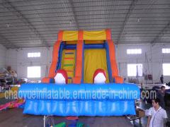 Inflatable Slides/inflatable slide/kid inflatable slide