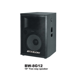 DJ PA Speaker Box with 800W