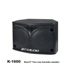Dual 8  Two Way Karaoke Speaker W/ 300W