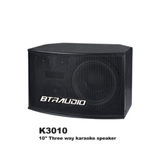 10  Three Way Karaoke Speaker W/300W