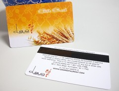 Magnetic stripe vip cards with signature panel