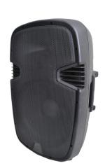 Audio Professional Loudspeaker