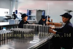 Xinxiang Wanhe Filter Co.,Ltd