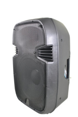 pro audio cabinet speakers