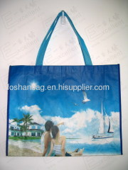 OPP-003 recycle bag