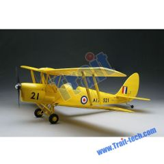 200 Class Tiger-Moth RC Airplane Model