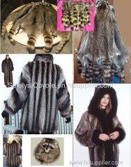 fur coats raccoon