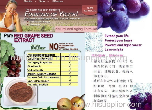 Grape seed extract--herb medicine