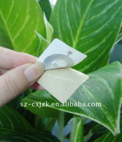 Smart Adhesive RFID Tag