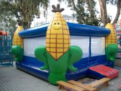 maize jumping house