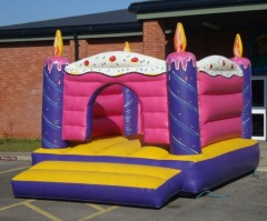 Birthday cake wholesale commercial bounce houses