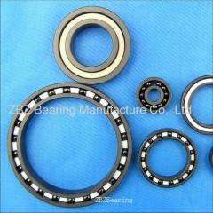 1217 Ceramic bearing
