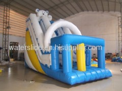 Winnie water slides for sale
