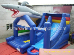 Shark bouncy slide