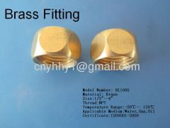 Brass hex pipe fitting