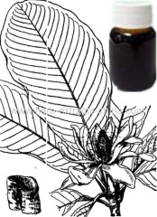 Magnolia essential oil