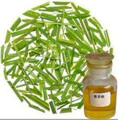 Citronella Oil Factory