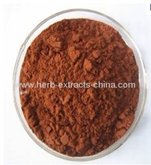KOSHER Certificated Grape Seed Extract