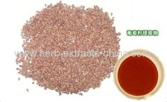 Grape Seed Extract Health Care