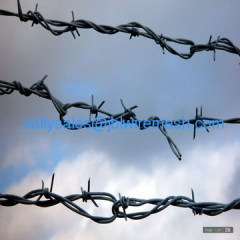 Hot-dipped Galvanized Barbed Wire China