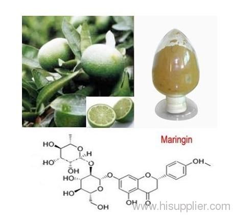 CAS 10236-47-2 Naringin