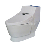 integrated toilet seat