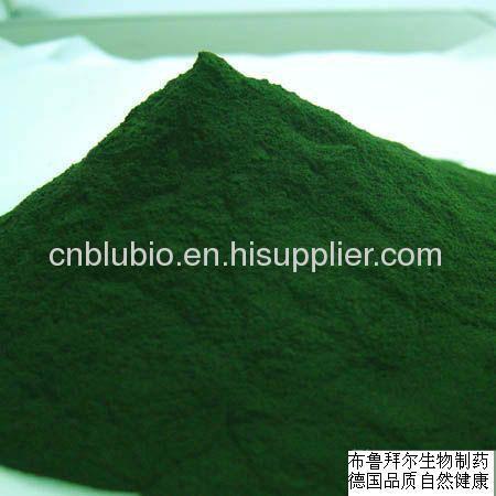 Green Spirulina Powder health food and drink powder