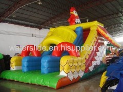 rooster big water slide