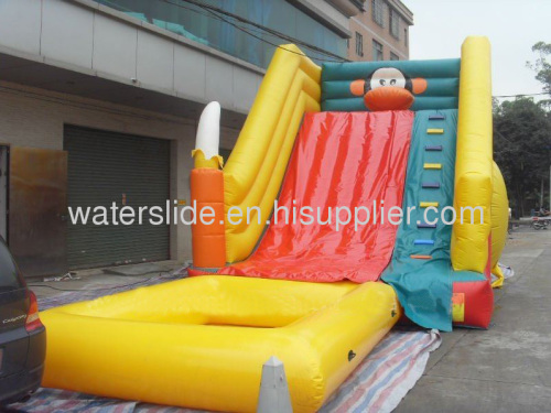 Monkey pool slide