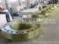 Forged flange\FOrging flange