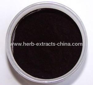 Bilberry Extract Vaccunium Myrtillus L.