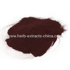 Grape Seed Extract Resveratrol CAS No.:501-36-0