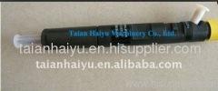 Delphi Injector EJBR05301D