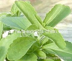 Stevia Rebaudioside 40%