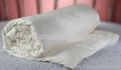 2012 Hot 100% Pure Silk Duvets