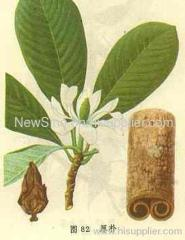 Magnolia Bark Extract by CO2