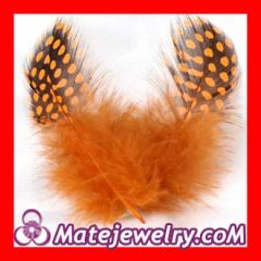 Rooster feathers Extensions Wholesale