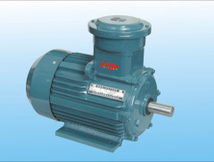 YB2-W,WTH/TH series explosion-proof motor