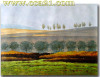 High quality 100% hand-painted landscape oil painting on canvas