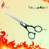 Professional Black Titanium Grip Stylist Thinning Scissors
