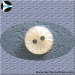 ROUND SHELL BUTTON