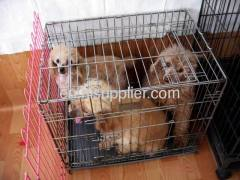 Welded Dog Cages