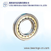 ROLLER CYLINDRICAL BEARING
