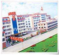 Guangdong AIKAI Industrial Group CO., LTD