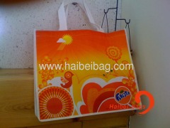 Laminated Colorful Bag